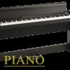 پیانو دیجیتال کرگ مدل C1