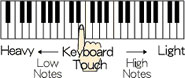 پیانو دیجیتال کاسیو CDP 100